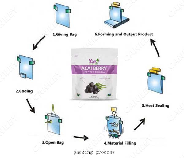 premade pouch filling process