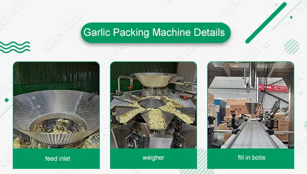 Garlic Packing Machine Details